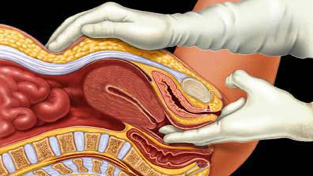 Обнаженной вагинальный половой акт видео порно групповое бисексуалы